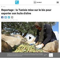 FRANCE 24 25/11/17 Reportage : la Tunisie mise sur le bio pour exporter son huile d'olive