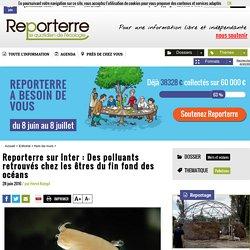 Reporterre sur Inter: Des polluants retrouvés chez les êtres du fin fond des océans
