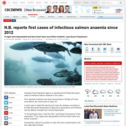 CBC 17/10/16 N.B. reports first cases of infectious salmon anaemia since 2012