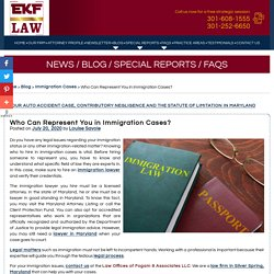 Who Can Represent You in Immigration Cases?