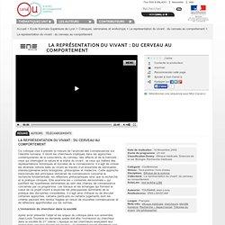 La représentation du vivant : du cerveau au comportement - Ecole Normale Supérieure de Lyon