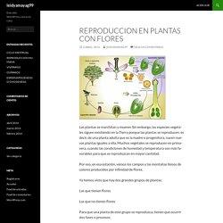 REPRODUCCION EN PLANTAS CON FLORES
