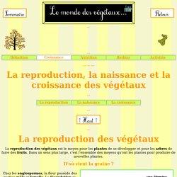 Reproduction, naissance et croissance des végétaux