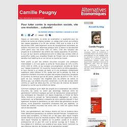 Camille Peugny » Blog Archive » Pour lutter contre la reproduction sociale, vite une révolution... culturelle!