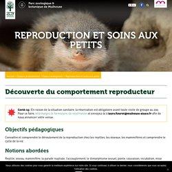 Reproduction et soins aux petits ⋆ Zoo de Mulhouse, parc zoologique et botanique