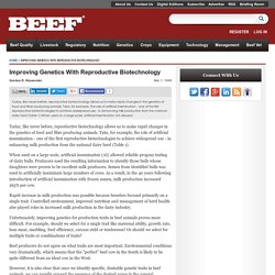 Improving Genetics With Reproductive Biotechnology: from BEEF Magazine
