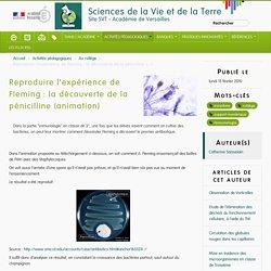 Reproduire l'expérience de Fleming : la découverte de la pénicilline (animation) - Sciences de la Vie et de la Terre