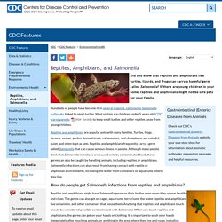CDC 25/11/13 Reptiles, Amphibians, and Salmonella