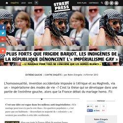 Plus forts que Frigide Barjot, les Indigènes de la République dénoncent l'« impérialisme gay »
