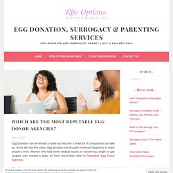 Which Are The Most Reputable Egg Donor Agencies? – Egg Donation, Surrogacy & Parenting Services
