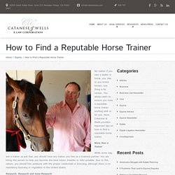 How to Find a Reputable Horse Trainer - Los Angeles Lawyer and Law Firm
