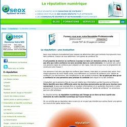Réputation Numérique : Ereputation (en Ligne) : Définition Et Risque