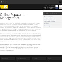 Online Reputation Management from TheWebSquad