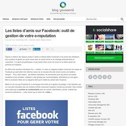 Les listes d'amis sur Facebook: outil de gestion de votre e-reputation - Blog SocialShare ( par YouSeeMii )