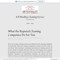 What the Reputed Cleaning Companies Do For You