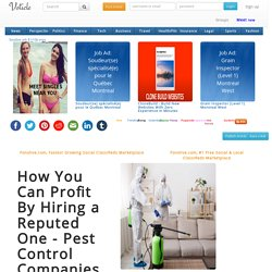 How You Can Profit By Hiring a Reputed One - Pest Control Companies
