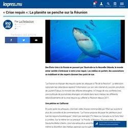« Crise requin »: La planète se penche sur la Réunion