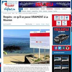 Requins : ce qu'il se passe VRAIMENT à La Réunion - Surfing France