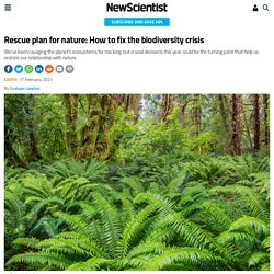 Rescue plan for nature: How to fix the biodiversity crisis