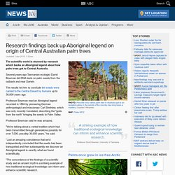Research findings back up Aboriginal legend on origin of Central Australian palm trees