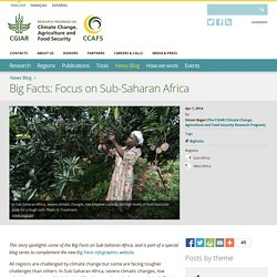 Big Facts: Focus on Sub-Saharan Africa