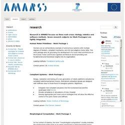 AMARSi Project