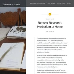 Remote Research: Herbarium at Home – Discover + Share