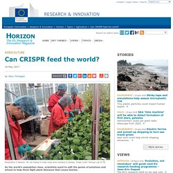HORIZON MAGAZINE (EU) 18/05/17 Can CRISPR feed the world?