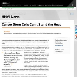 News: Cancer Stem Cells Can't Stand the Heat