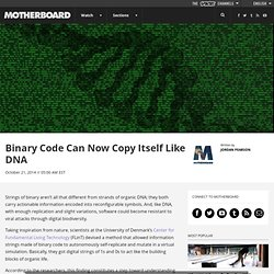 New research shows how binary code can self-replicate like DNA