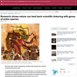 Research shows nature can beat back scientific tinkering with genes of entire species
