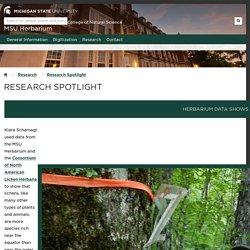 Research Spotlight - MSU Herbarium