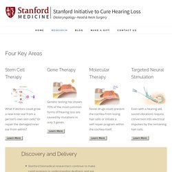 Stanford Initiative to Cure Hearing Loss