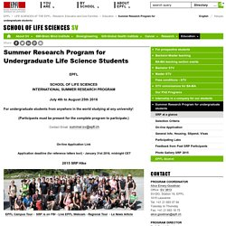 Summer Research Program for undergraduate students