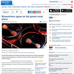 Researchers agree on lab grown meat plans