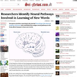 Neural Pathways of Word Learning