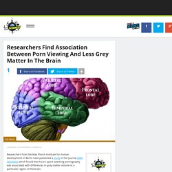 Researchers Find Association Between Porn Viewing And Less Grey Matter In The Brain