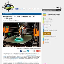 "Researchers Can Now 3D Print Stem Cell ""Building Blocks"""