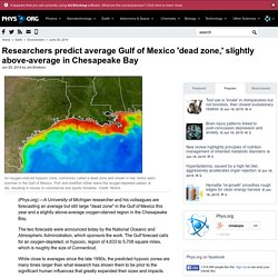 Researchers predict average Gulf of Mexico 'dead zone,' slightly above-average in Chesapeake Bay