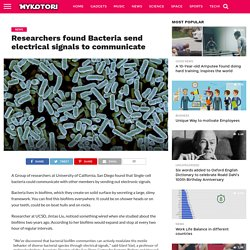 Researchers found Bacteria send electrical signals to communicate
