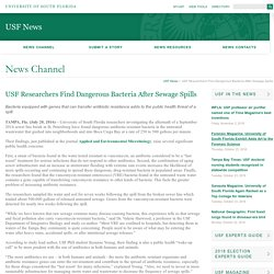UNIVERSITY OF SOUTH FLORIDA 27/07/16 USF Researchers Find Dangerous Bacteria After Sewage Spills