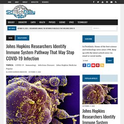 10/17/20: Johns Hopkins Researchers Identify Immune System Pathway That May Stop COVID-19