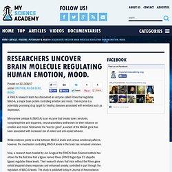 Researchers uncover brain molecule regulating human emotion, mood.