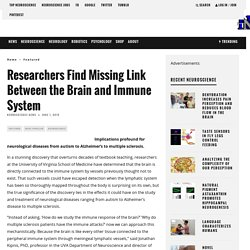 Researchers Find Missing Link Between the Brain and Immune System