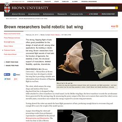 researchers build robotic bat wing