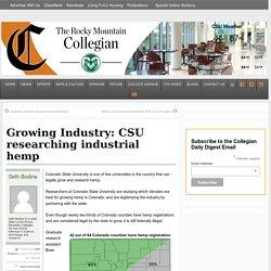 Growing Industry: CSU researching industrial hemp – Rocky Mountain Collegian