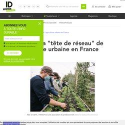 """Zoom sur la """"tête de réseau"""" de l'agriculture urbaine en France"""