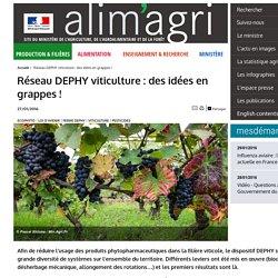 MAAF 27/01/16 Réseau DEPHY viticulture : des idées en grappes !