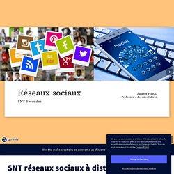 SNT réseaux sociaux à distance