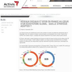 Réseaux sociaux et BtoB en France au cœur d'un écosystème global : quelle stratégie adopter ?